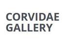 Corvidae Gallery
