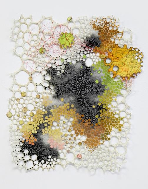 , 'Terrestrial,' 2010-2015, Garis & Hahn