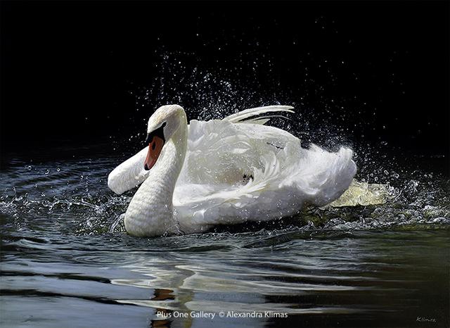 , 'Beauty the Mute Swan,' 2018, Plus One Gallery