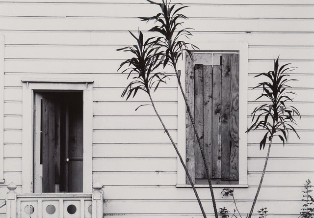 Pirkle Jones, 'Untitled (House and Plant)', Heritage Auctions