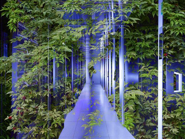, 'Blue Aisle,' 2018, WILLAS Contemporary