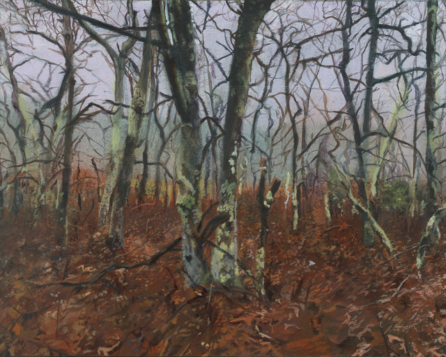 Emma Tapley, 'Forest, Sag Harbor, NY', 2018, Garvey   Simon