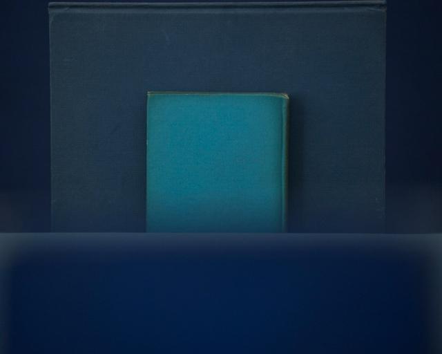 , 'Beyond Summer,' 2010, Yancey Richardson Gallery