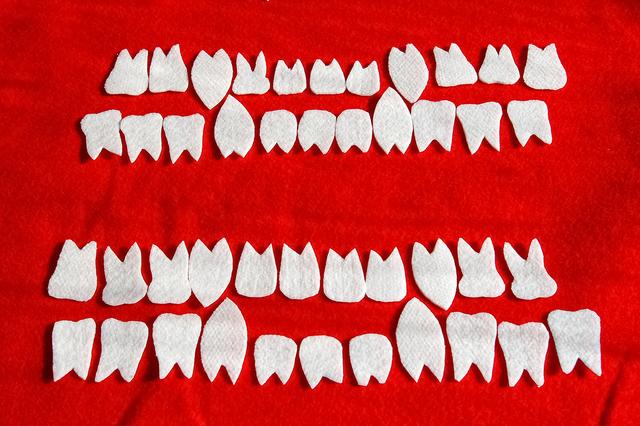 , 'Bear Teeth,' 2008, dc3 Art Projects