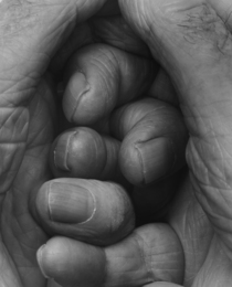 Self-Portrait, Interlocking Fingers, No. 19