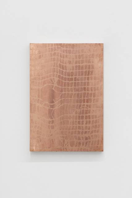 Tomás Díaz Cedeño, 'Untitled', 2019, PEANA