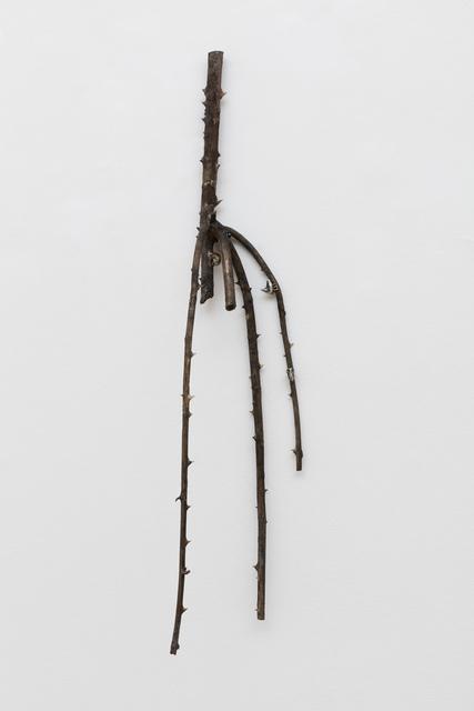 , 'Untitled (rose and arm),' 2017, Monica De Cardenas