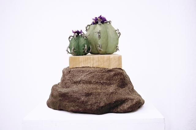 , 'Cacti of Arizona ,' 2016, GRIN