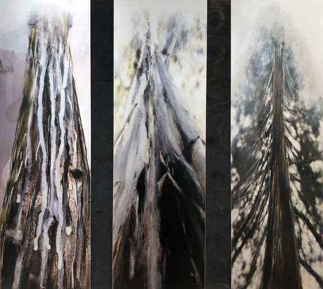 , 'Seeping Out. After the Theatre of Trees,' 2019, Dominik Mersch Gallery