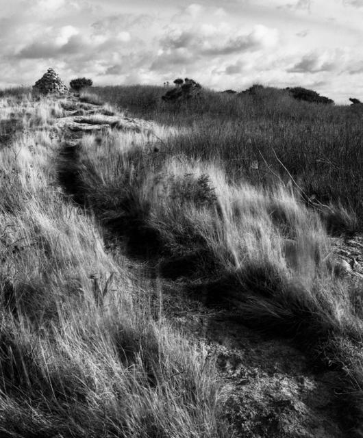 , 'Island Path, Star Island,' , Pucker Gallery