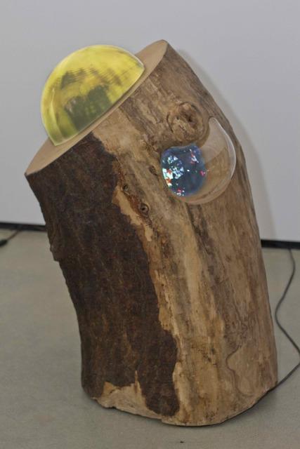 , 'Manhattan Tree #5,' 2016, C24 Gallery