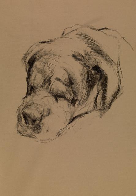 , 'Big Dog,' 2014, Flowers