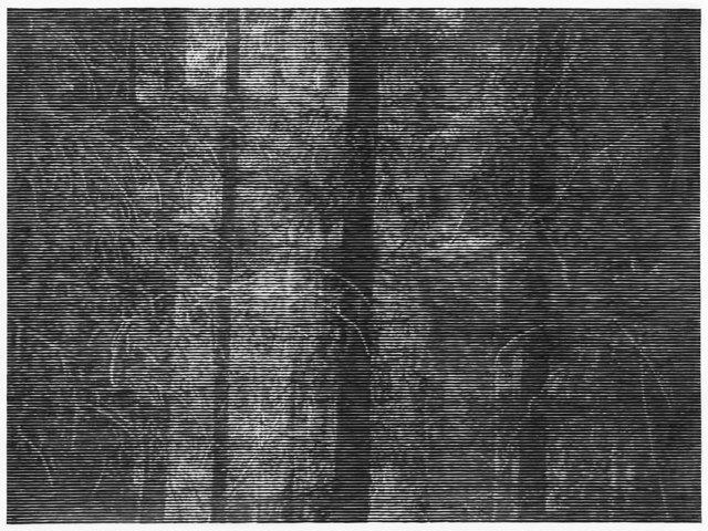 , 'Wald bei Colditz II,' 2014, Alan Cristea Gallery