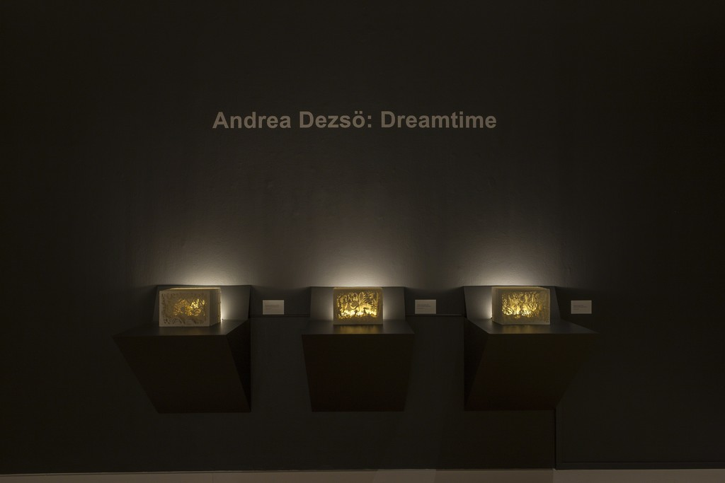 Andrea Dezsö: Dreamtime Installation view at the Virginia Museum of Contemporary Art (MOCA). Photograph by Glen McClure