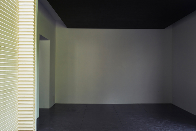 , 'Heimo Zobernig (Installation view),' 2015, 56th Venice Biennale