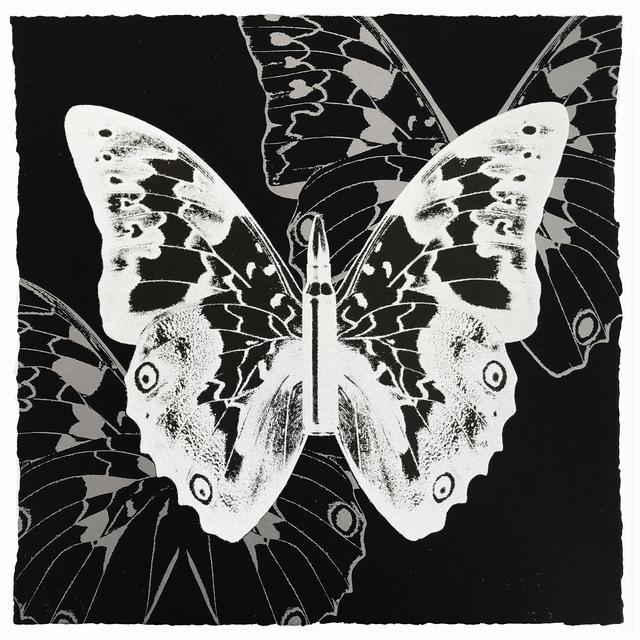 Rubem Robierb, 'Metamorphosis - White on Black', 2018, Taglialatella Galleries