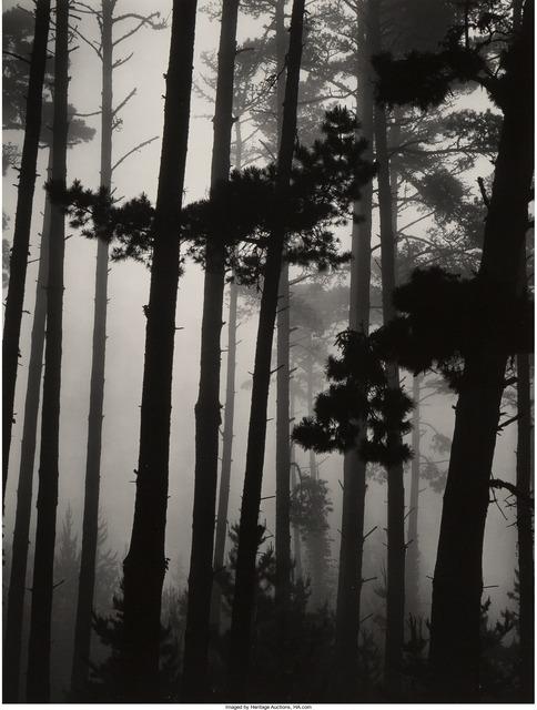 Brett Weston, 'Pines in Fog, Monterey', 1962, Heritage Auctions