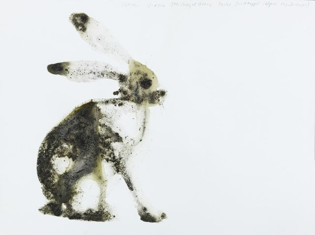 , 'Black-tailed Jackrabbit Lepus californicus (JFK Short Term Parking, Queens),' 2016, Salon 94