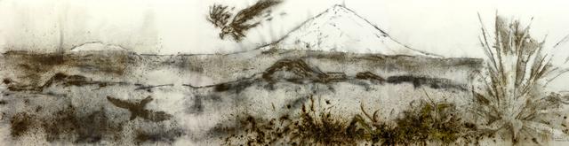 Cai Guo-Qiang, 'Sunshine and Solitude: Shadow', 2010, Fundación Proa