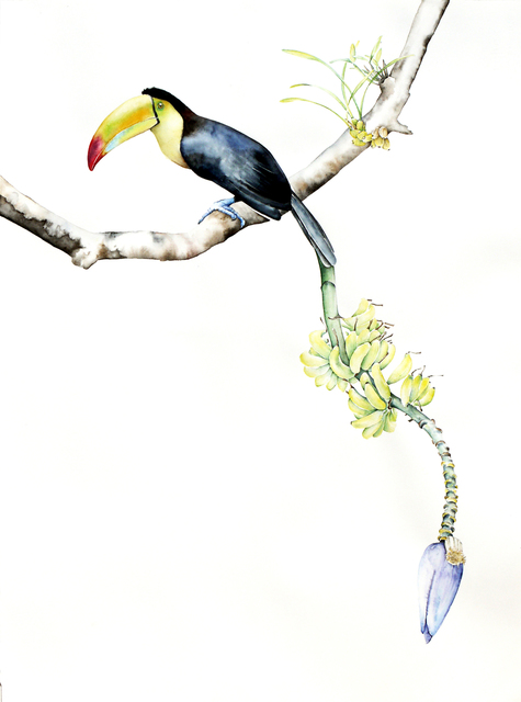, 'Bird of Paradise 3,' 2015, Clark Gallery
