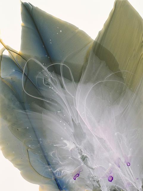 Marina Dunbar, 'Movement Study in Sea Green', 2017, Spalding Nix Fine Art