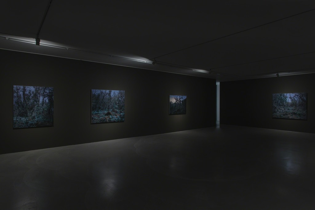 Installation view, K1