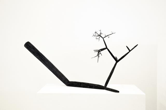 , 'Black Branch 1,' 2015, ZAK BRANICKA
