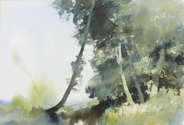 , 'Ash Trees- Norfolk,' , Portland Gallery
