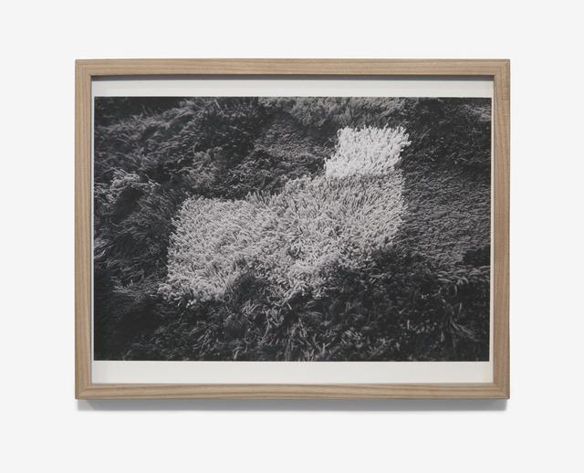 , '#1,' 2017, Simone DeSousa Gallery