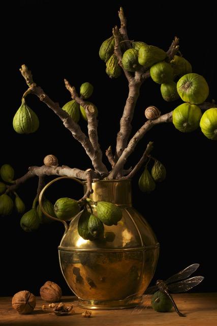 , 'Figs, after G.F.,' 2009, Robert Klein Gallery