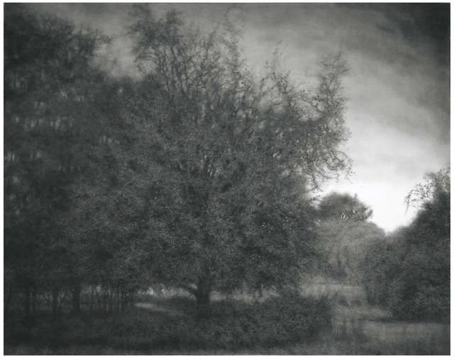 Sue Bryan, 'The Golden Apple Tree', 2019, DANESE/COREY