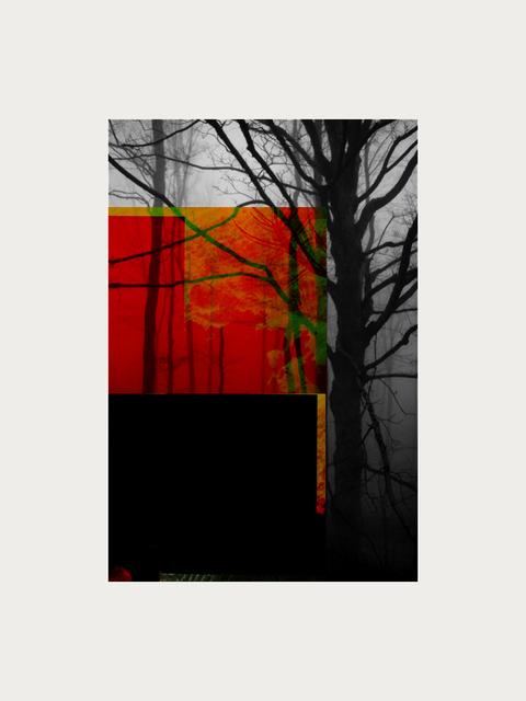 , 'Forest III,' ca. 2018, Artgráfico