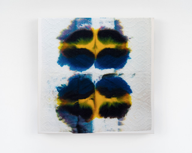 , 'Piezo_Flora_006 (Blue and Yellow Pansy),' 2018, Ed. Varie