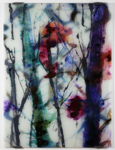 , 'Magnolias 27,' 2017, Galerie Nathalie Obadia