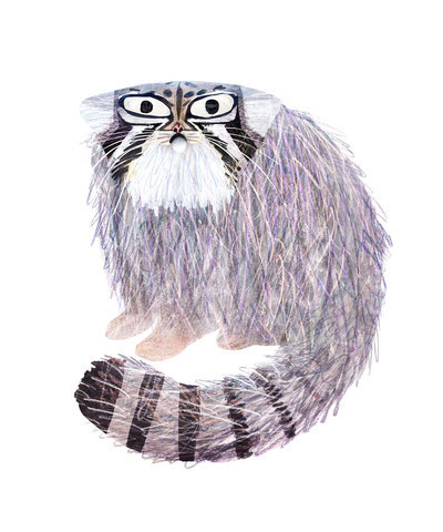 Brendan Wenzel, 'The Pallas Cat', ArtStar