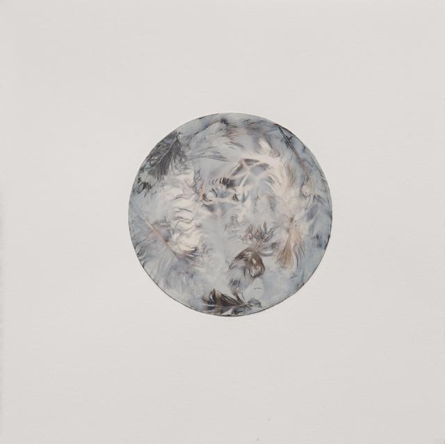 Mayme Kratz, 'Morning Mist, from Three Days in the Wilderness', 2014, Etherton Gallery