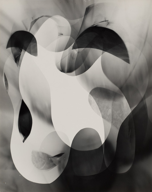 , 'Untitled (organic abstract),' ca. 1940, Robert Koch Gallery