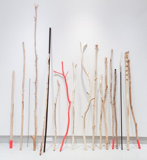 , 'An Array of Walking Sticks,' 2017, Miller Yezerski Gallery