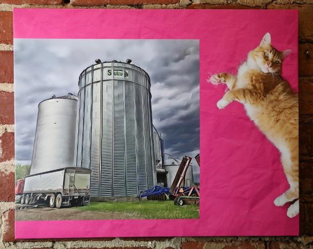 , 'Grain Bins and Ritzy on Pink,' 2019, Mason-Nordgauer Fine Arts Gallery