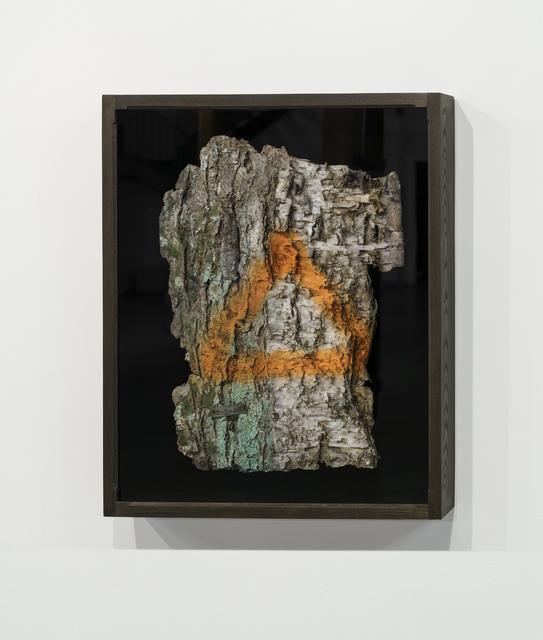 , 'Vieux bouleau,' 2017, PARISIAN LAUNDRY