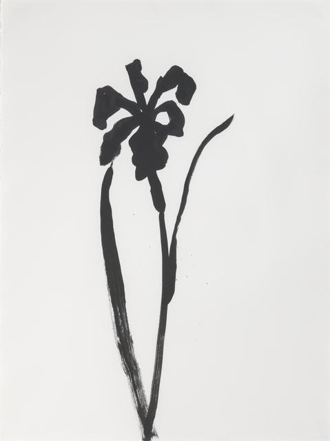 , 'Siberian Iris,' 1989, Susan Sheehan Gallery