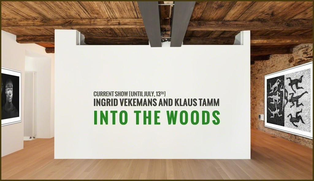 Woods, their animals and plants. Follow Ingrid Vekemans and Klaus Tamm into the hidden places of nature where its secrets lay.
