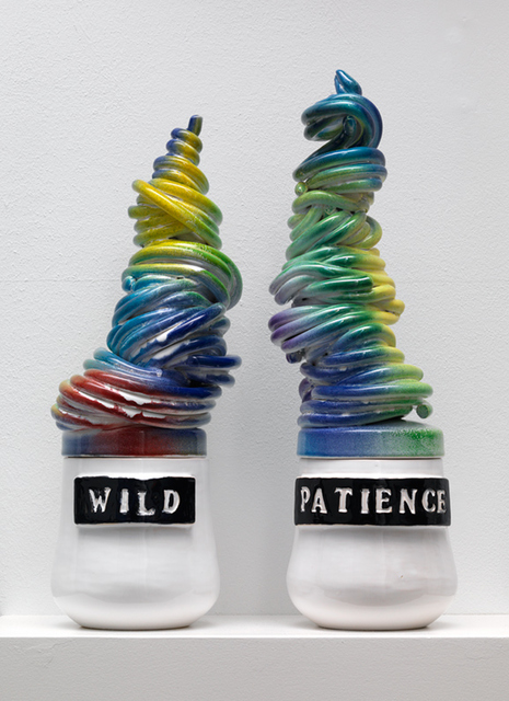 , 'wild patience,' 2013, Galerie Fons Welters