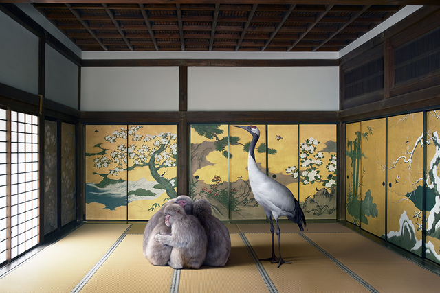 , 'Guardian of the Temple, Nazen-ji  Temple, Kyoto,' 2015, Galerie Les filles du calvaire