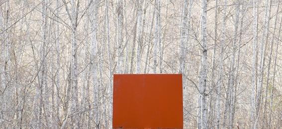 Bill Anderson, 'Counter Balance #2,' 2008, Wilding Cran Gallery