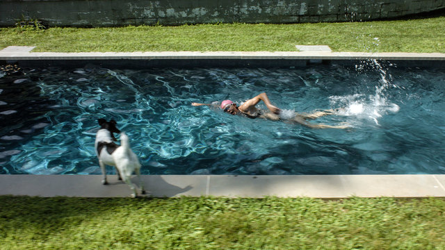, 'Scenes from Western Culture, The Pool (Elizabeth Peyton),' 2015, McEvoy Foundation for the Arts