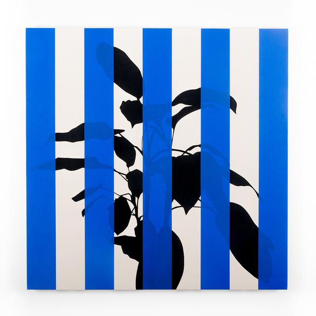 , 'Dieffenbachia (Blue),' 2016, Instituto de Visión