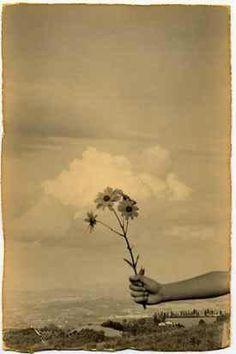 Yamamoto Masao, '1092 from Nakazora', Lisa Sette Gallery