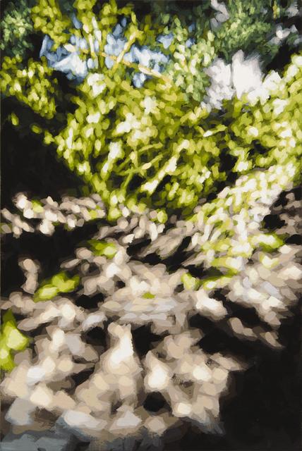, 'Untitled,' 2013-2015, Galería Juana de Aizpuru