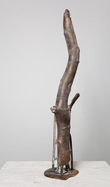 , 'Weeping Birch,' 2010, carlier | gebauer